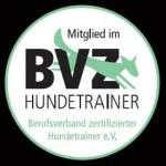bvz_logo