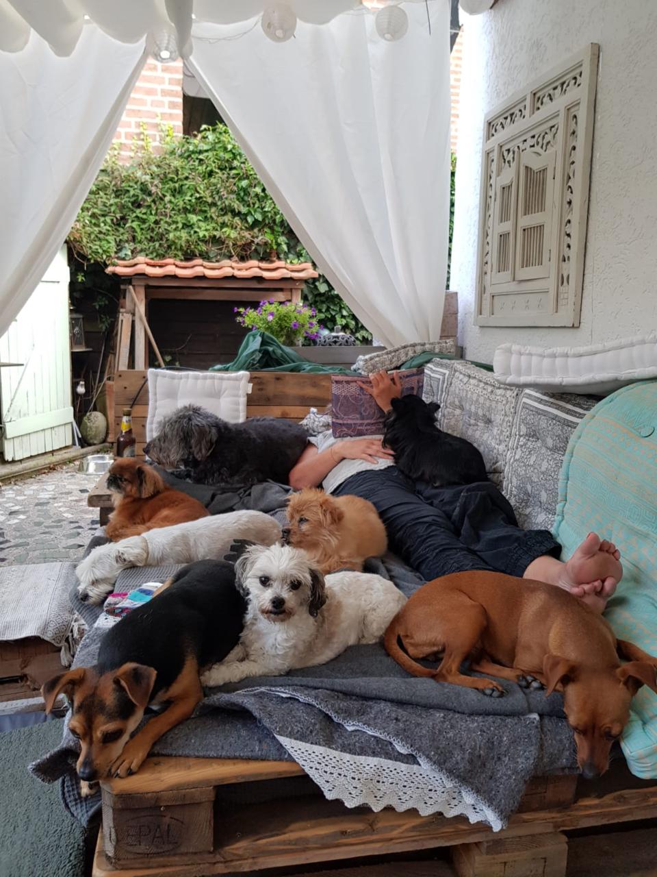 Regina Brausch Hundeschule Goch