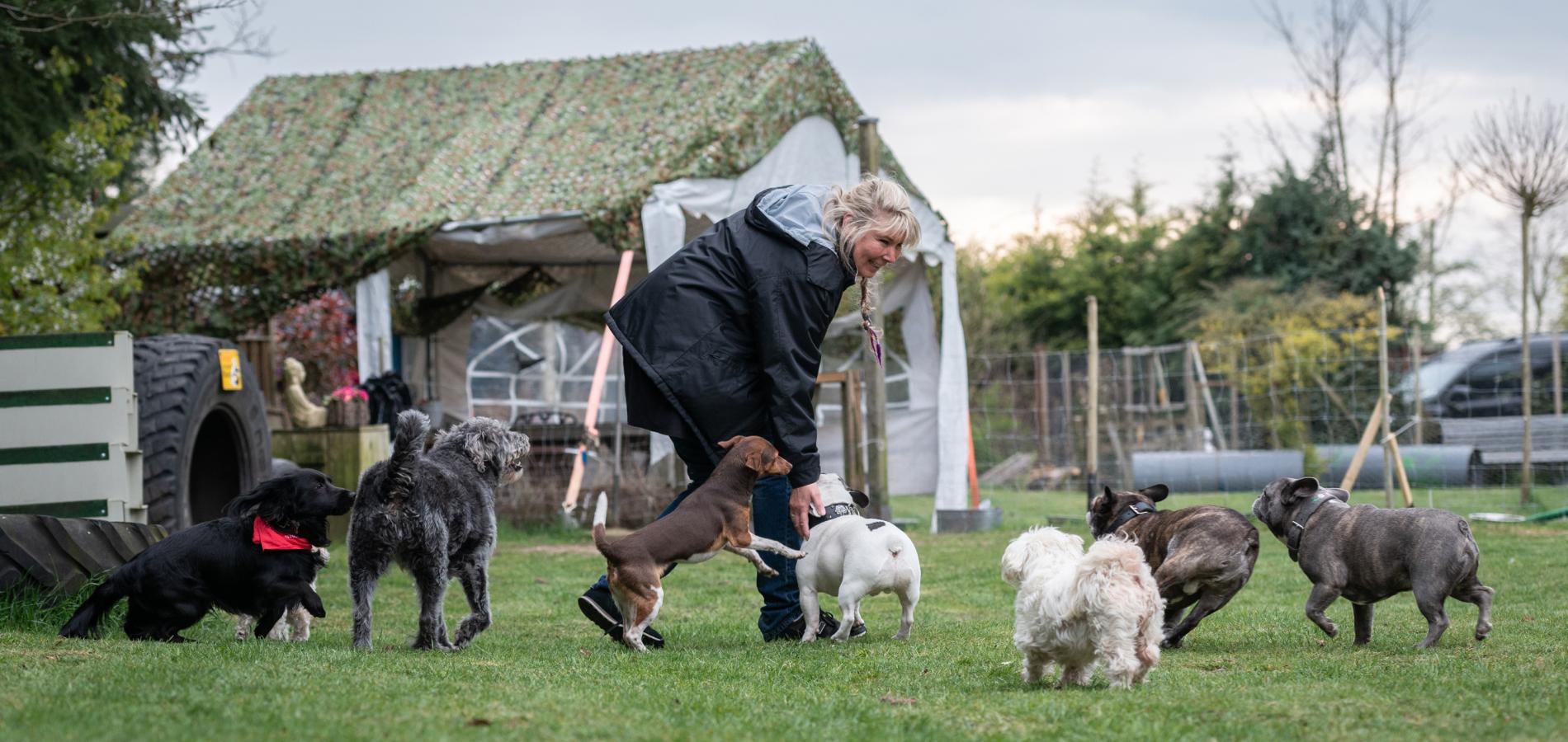 Hundeschule Goch - Zu jedem Hund ein individuell angepasstes Training